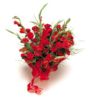 Mixed Red Flowers