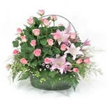 An exquisite choice to express your sentiments to that special someone (20 pink Roses, 3 Lilies, Daisies and Greens).