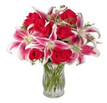 This beautiful arrangement is sure to leave them Star Struck. Consisting of Three Elegant Stargazer Lilies and Six Red Roses.